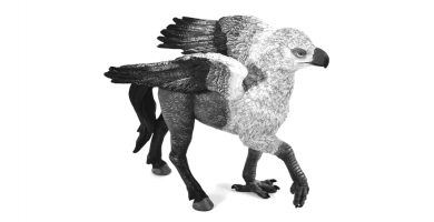 hipogrifos hipogrifo hippogriff